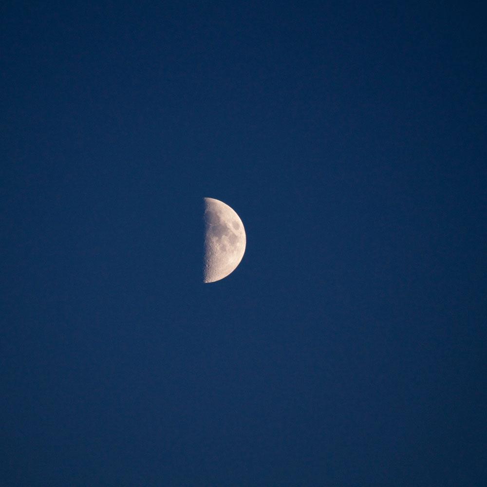 Valore di crescita e sviluppo equilibrato: Quarto di Luna Crescente del 14 gennaio 2019
