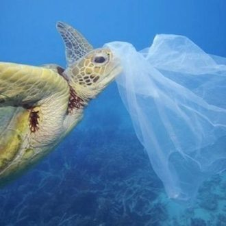 Emergenza plastica negli oceani: save the planet!