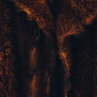 Eco Fur, scelta etica e cool