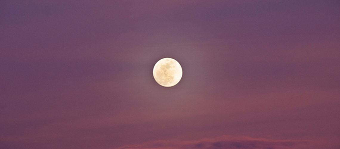 19 febbraio 2019: una Luna che ci parla di connessione profonda
