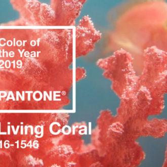 Living coral: il colore Pantone per il 2019