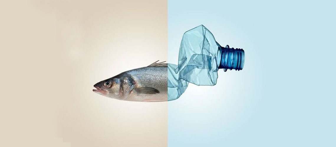 Emergenza plastica negli oceani: cosa fare in concreto