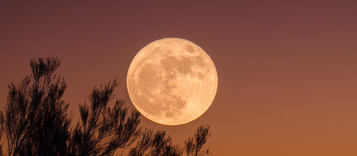 Esprimere il potere vitale: Luna Piena del 18 maggio 2019 - Wesak