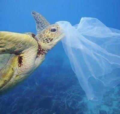 Emergenza plastica negli oceani: save the planet!
